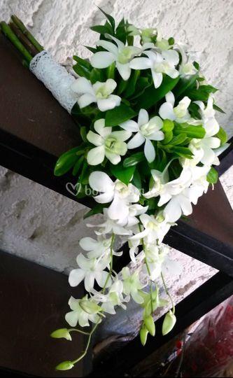 Ramo de novia en orquídea