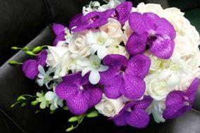 Hydragena Arte y Diseño Floral