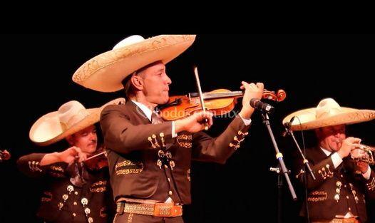 Excelente mariachi