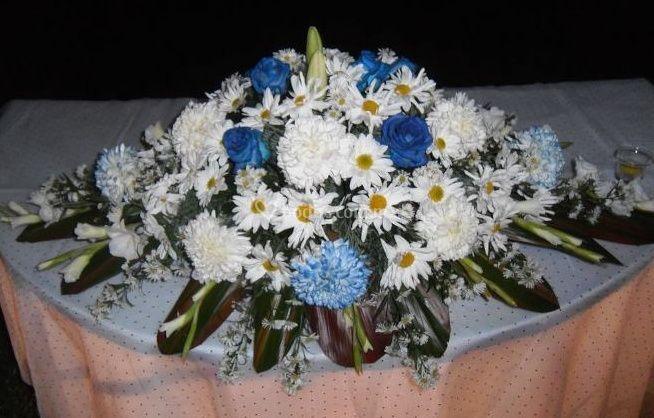 Florería Colibrí