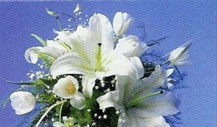 Florería Vicky 1