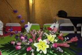Florería El Ave Del Paraíso