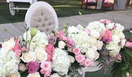 Gilda Garza Flores Más Diseño 1