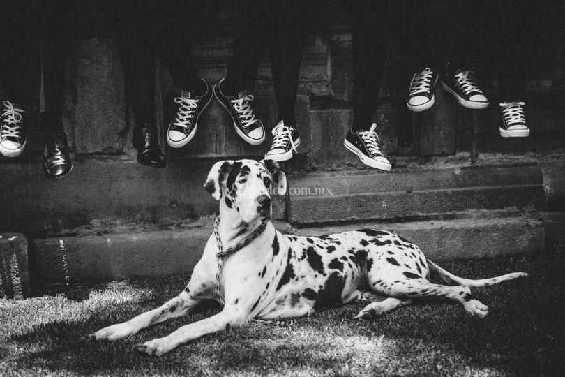 Padrinos & pup