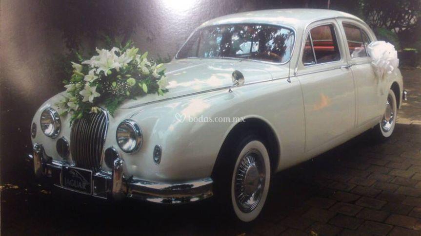 Jaguar 1959