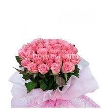 Amor de rosa