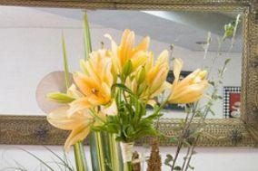 Angélica Estilo Floral
