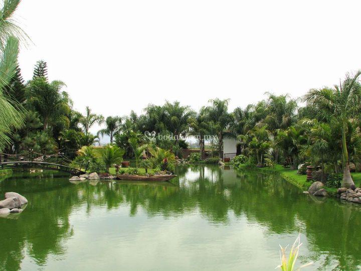 Area de lago