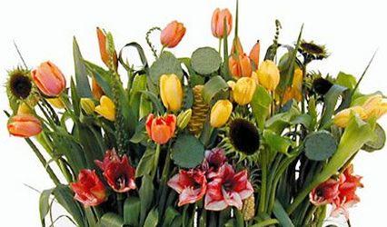 Florería el Rosal