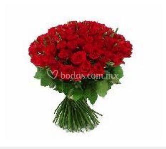 100 Rosas