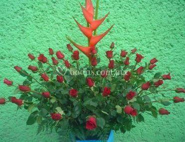 Rosas con heliconia