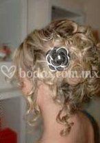 Peinado novia crespo recogido