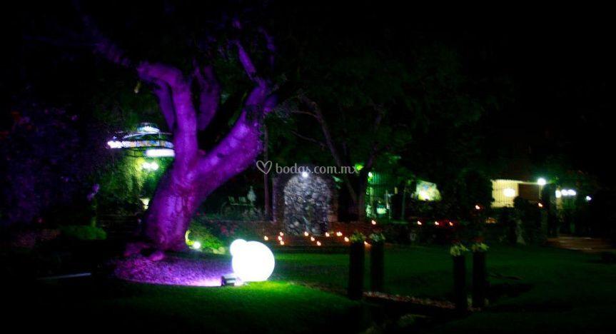 Jard n noche de villa xavier foto 29 for Jardin villa xavier jiutepec