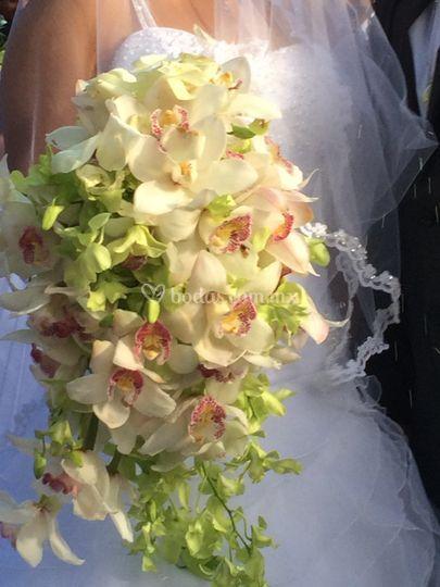 Ramo en cascada de orquídeas