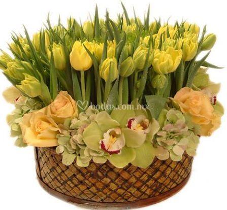 Tulipanes, rosas y orquídeas