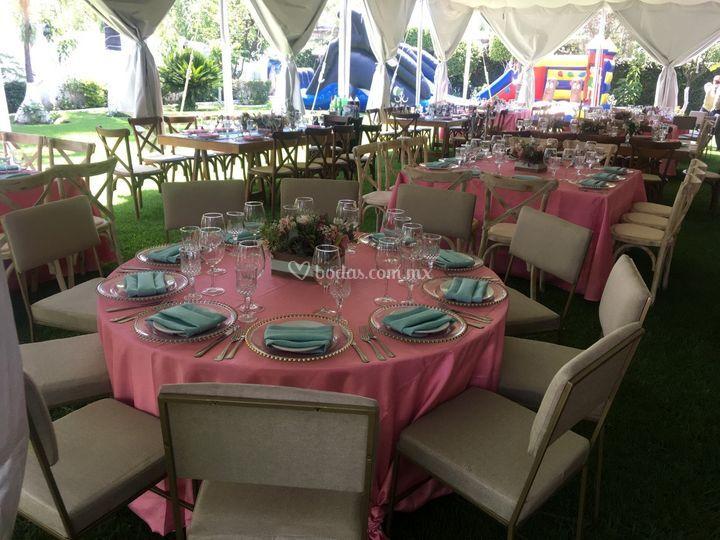 Mantel rosa palo silla renosh