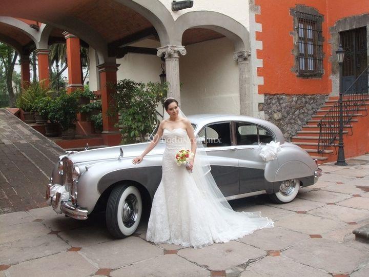 Jaguar plata 1