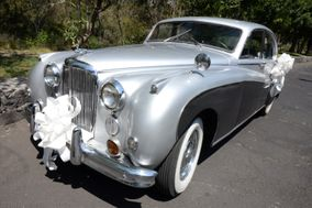 Jaguar Rent Cars