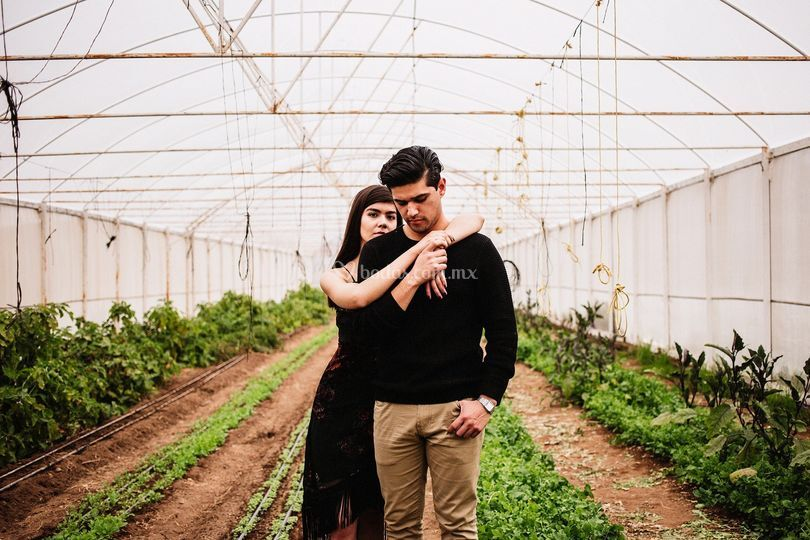 Valle de Guadalupe engagement