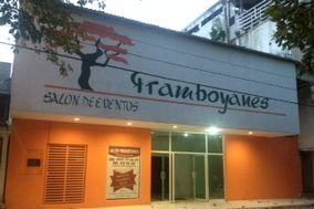 Salón Framboyanes