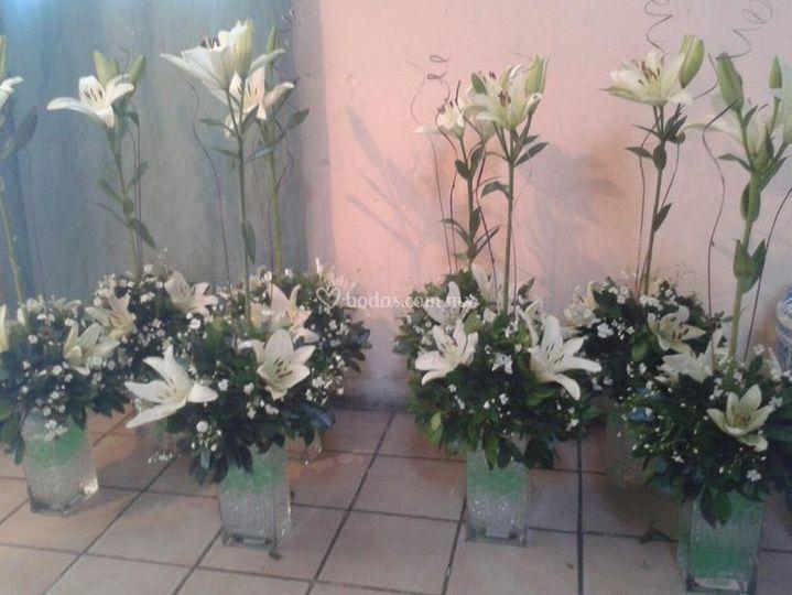 Ideales para bodas