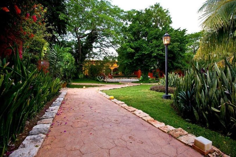 Hacienda Misné