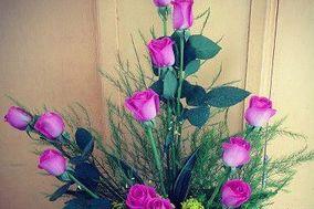 Florería Ari