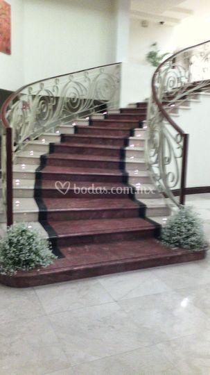 Torreon marriott hotel for Escalera 5 pasos afuera