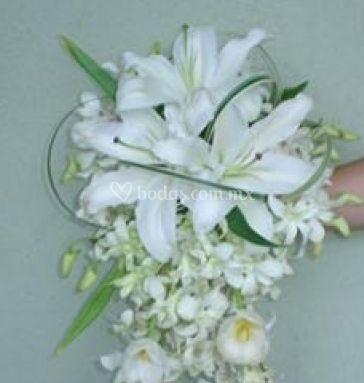 Hermoso de cascada con casablancas y mini orquídeas