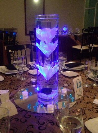 Iluminadas para tu boda