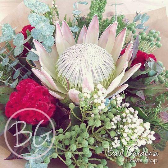 Flores de todo tipo