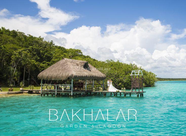 Vive la Experiencia Bakhalar