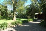 Jardin Maja de Jard�n Maja