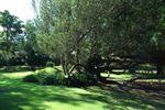 Jardin para la boda civil de Jard�n Maja
