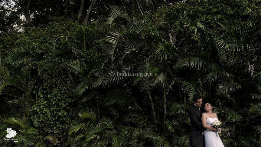 Una linda boda Puerto Vallarta