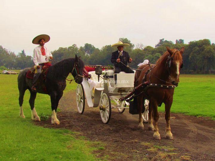Carreta y caballos