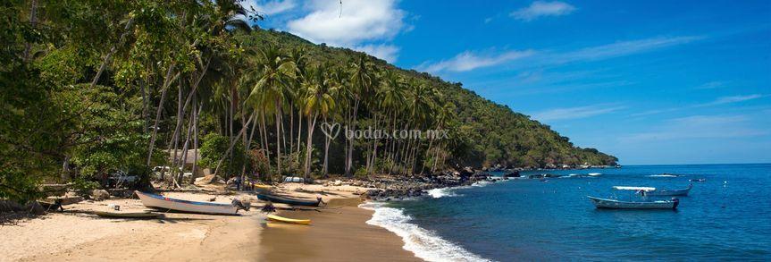 Playas nacionales e internacionales