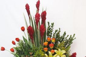 Las Margaritas Florería