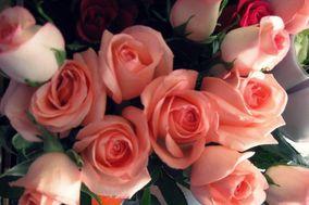 Florería Yola