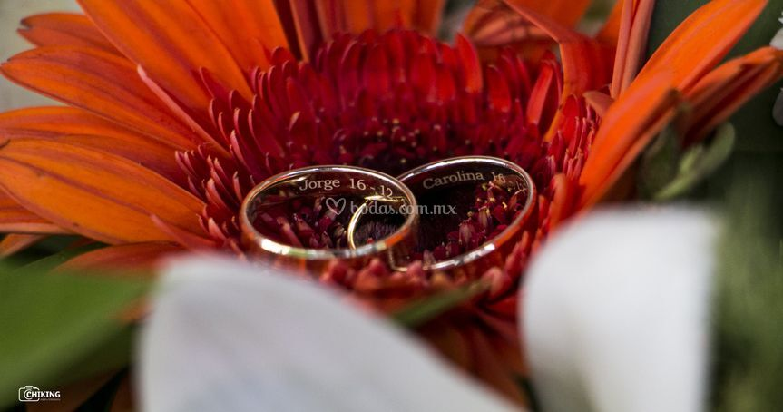 Los anillos