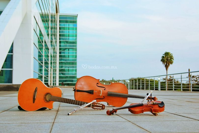 Instrumentos del ensamble