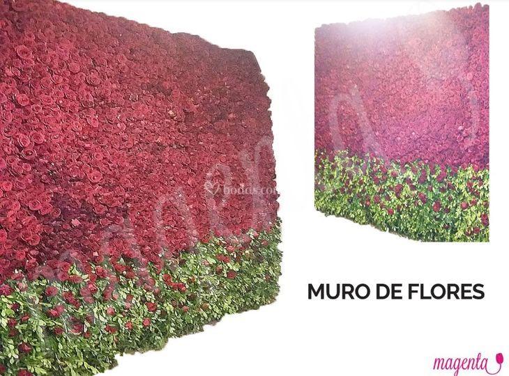 Uro de flores