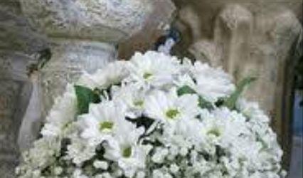 Kleeb Florería