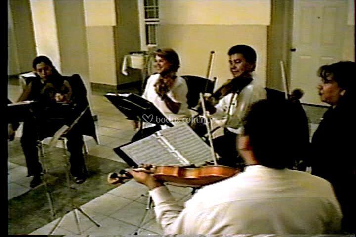 Quinteto de cuerdas