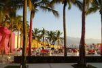 Mesas rodeadas de palmeras de B y B Banquetes