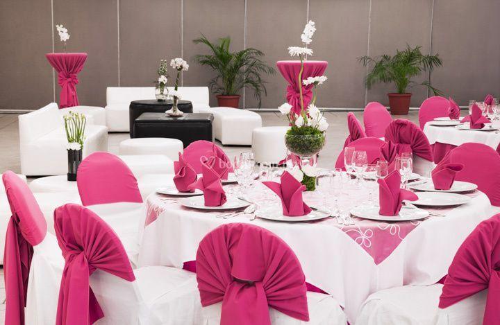 Montaje rosa