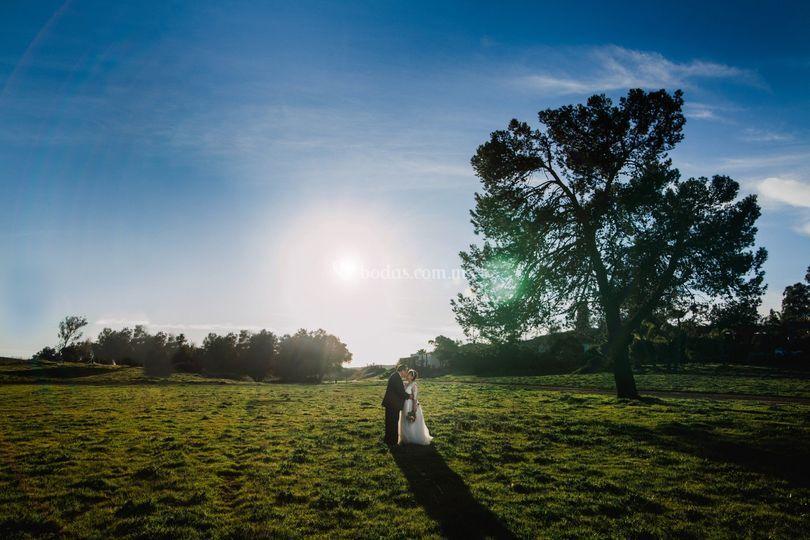 Bost boda