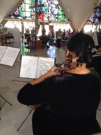 Cello ceremonia religiosa