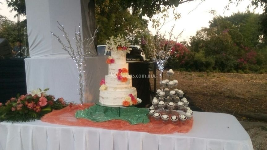 Boda nude cake