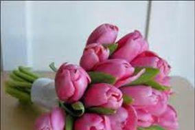Florería Flor y Canto